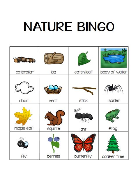 printable nature board games nature bingo printable activity take a hike with your