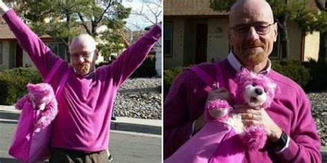 bryan cranston pink aaron paul posts fabulous photos of pink clad bryan