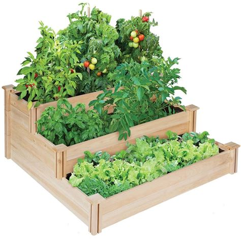 raised garden bed  great harvests  year