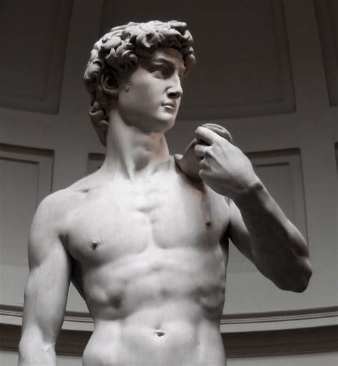 david statue post a statue of someone who looks exactly like you bodybuilding forums
