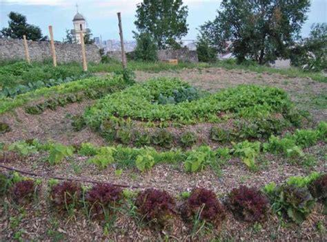 giardino sinergico serra da giardino archivi il di celano greenhouse