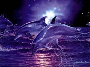 destacados de agua fondo de pantalla 11 1024x768 fondos de descarga delfines arte im 225 genes para wallpapers
