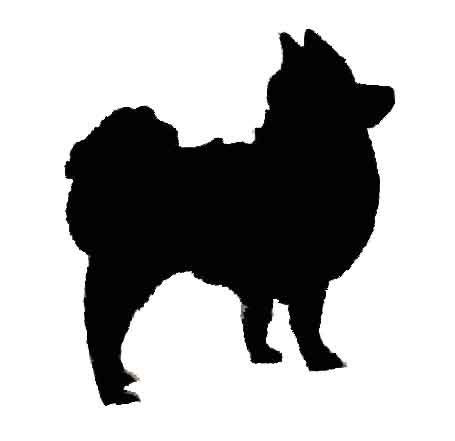 cr pomeranians l l engineering a z silhouettes
