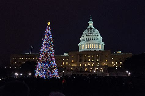 us capitol christmas tree coming from colorado
