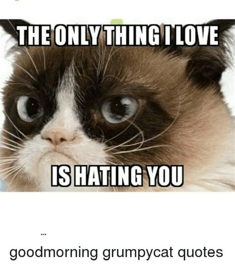 Grumpy Cat Good Morning Meme - grumpy cat meme good morning 17005 notefolio