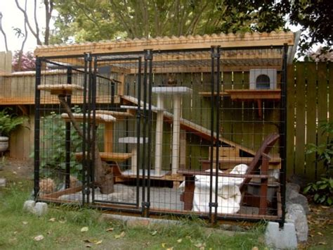 cat patio homeowner builds a weird patio out back then the cat