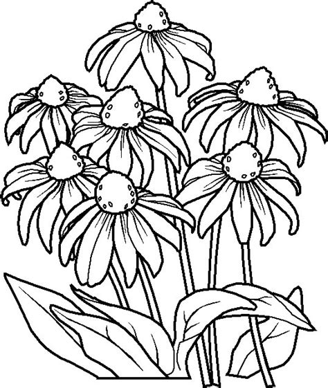 coloring pages of flowers mexican flowers coloring pages coloring pages