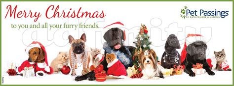 merry christmas      furry friends facebook cover adfinity
