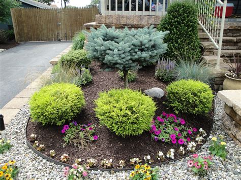 landscape plants shrubs for landscaping south jersey landscape design