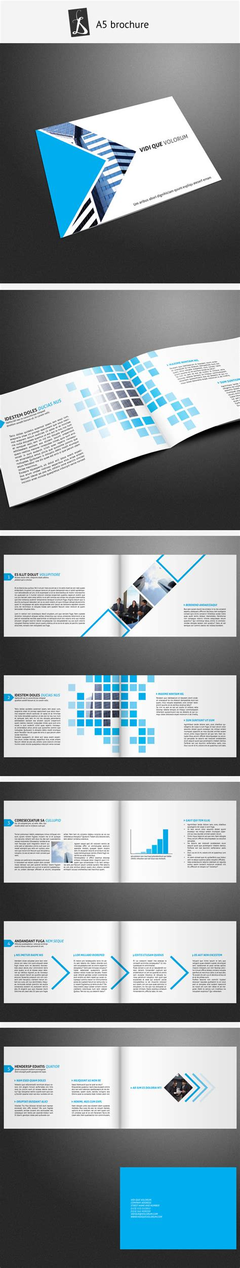 A5 Brochure 7 By Demorfoza On Deviantart A5 Brochure Template Indesign