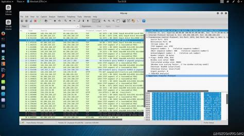 wireshark tutorial router basic of network protocol analyzer wireshark on linux