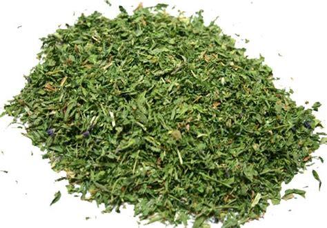 Herbal Alfalfa au naturale tea time tuesday in review quot alfalfa herb