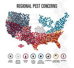 Vacation Home Plans Kissing Bug Locations Galleryhip Com The Hippest