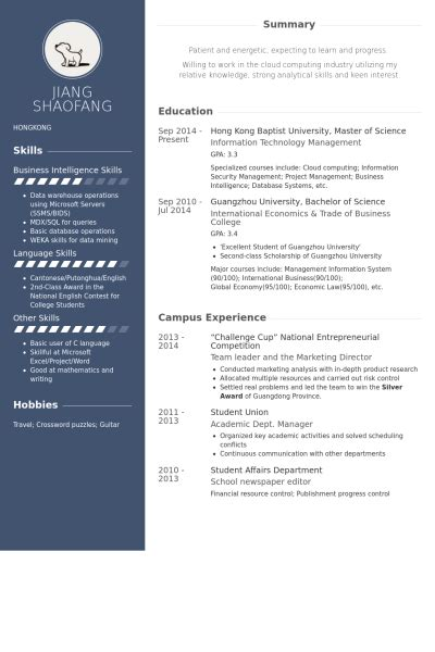 entrepreneur resume sles visualcv resume sles database
