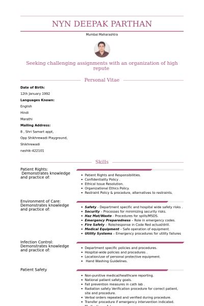 resume format for nurses freshers personnel exemple de cv base de donn 233 es des cv de visualcv