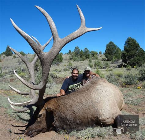 Arizona Records 25 Best Ideas About Elk On The Elk Taxidermy Decor And Antlers
