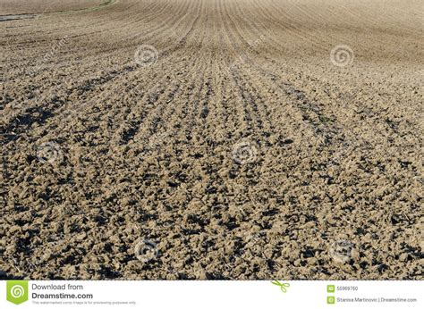 Dirt In The Details by Ploughed Soil Stock Photo Image 55969760