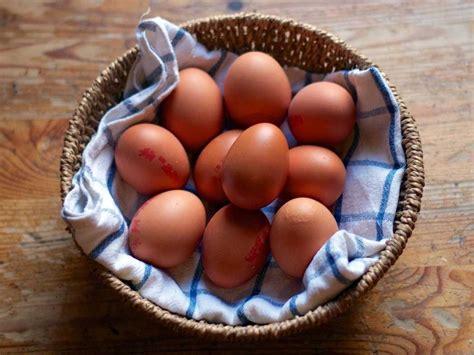 1 egg 100 floors questions business insider