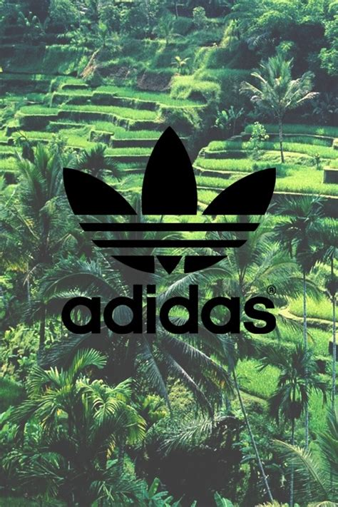 Did Adidas Sign With The Mba by Adidas Originals Logo