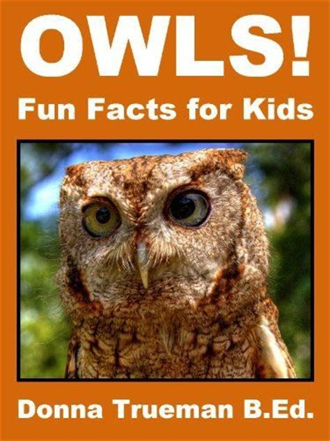 19 best images about owls on pinterest owls owl and 53 best images about owl based curriculum on pinterest
