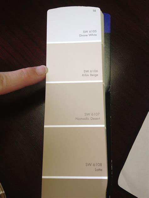 picking paint colors dontaye scott neal sherwin williams kilim beige ryan homes tip the best