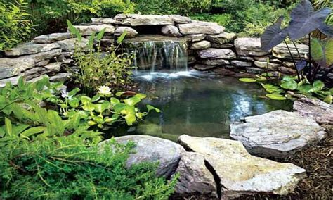 large backyard pond waterfall ideas for ponds large backyard ponds back yard