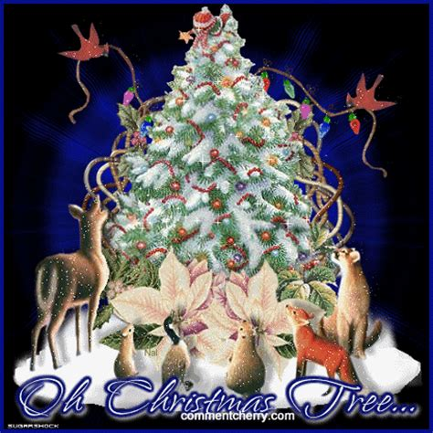 oh christmas tree pictures photos and images for