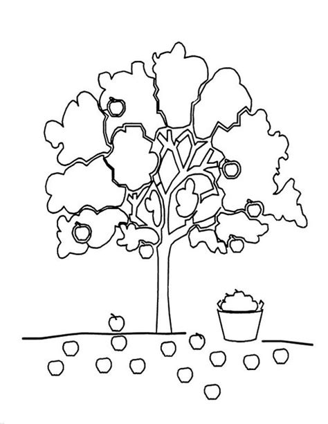 apple tree the giving tree and coloring on pinterest