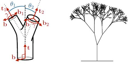 uncovering da vinci s rule of the trees inside science