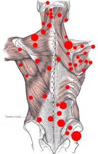Back Shoulder Muscle Pain » Home Design 2017