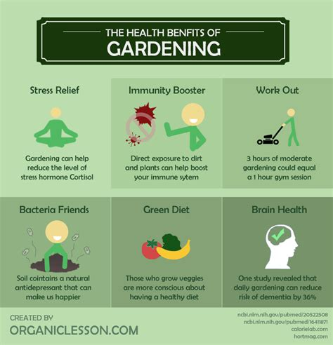 6 wonderful health benefits of gardening infographic