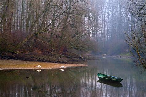 rheinaue altrhein lingenfeld   branch   river  flickr