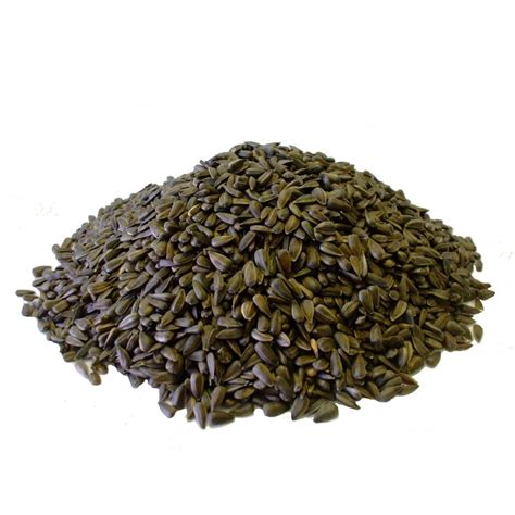 black sunflower seed bird food copdock mill black sunflower seed copdock mill from