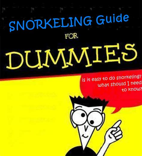 the guide to guides books snorkeling guide for dummies part 1 exotichorizons