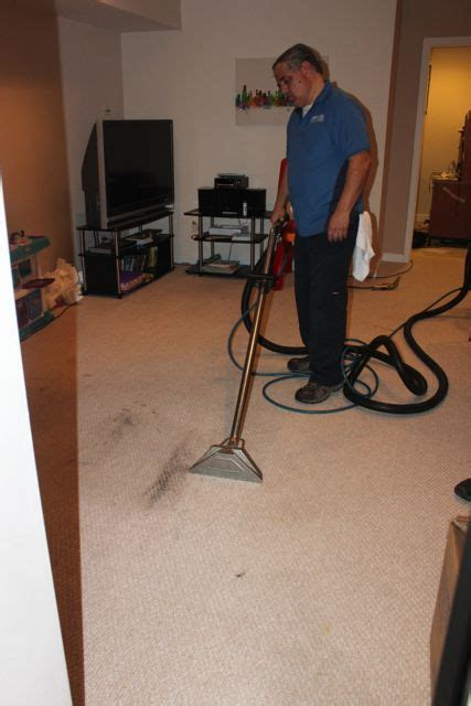 chicago upholstery cleaning carpet and upholstery cleaning chicago windy city carpet