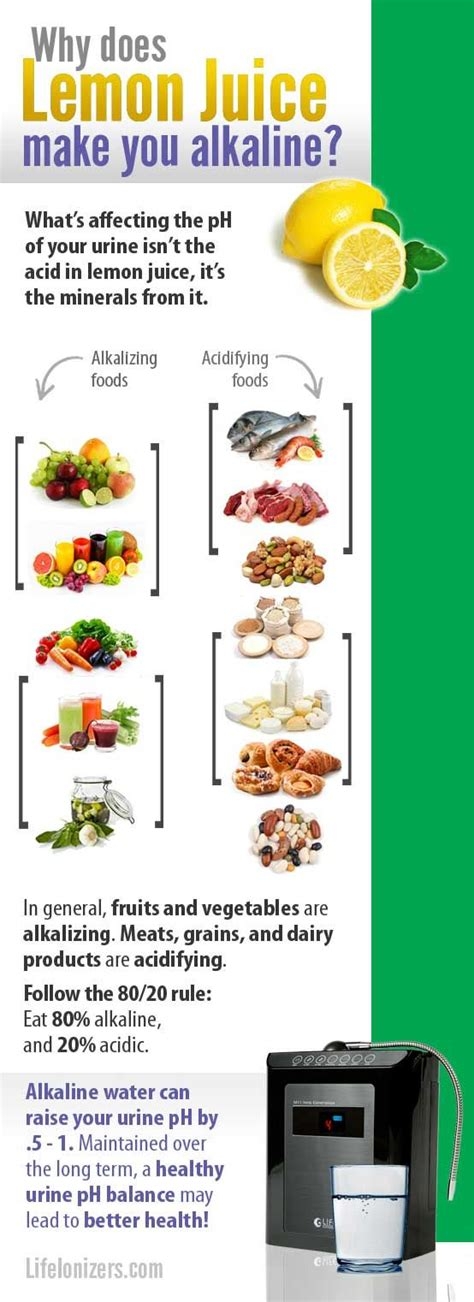 15 Signs You Metabolism Problems by 25 Best Ideas About Metabolic Symptoms On