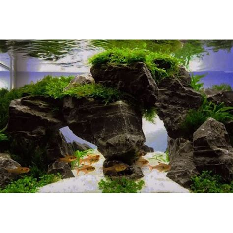 Aquascape Store by Aquascape Design Ideas Android Apps On Play