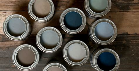 jeff lewis paint line maureen