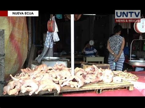 Buro Ng Nueva Ecija by Kaso Ng Avian Flu Virus Sa Nueva Ecija Kumpirmado Na