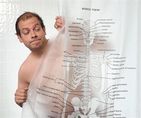 human skeleton shower curtain human skeleton shower curtain