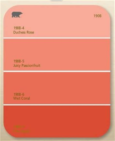 coral paint colors best 25 coral furniture ideas on coral