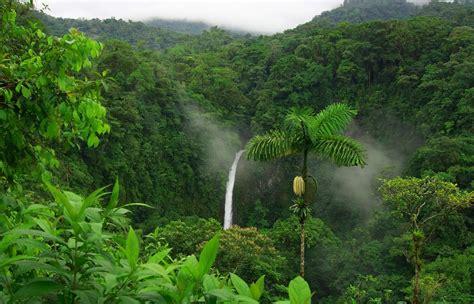 image gallery la selva