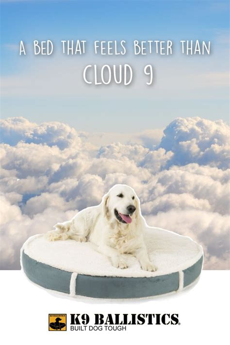 k9 ballistics dog bed best 25 orthopedic dog bed ideas on pinterest pet beds