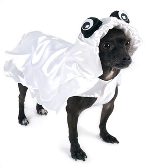 ghost costume for dogs ghost costumes a costume idea