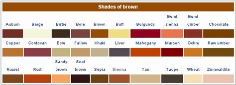 colors of brown shades brown hairstyles 36302
