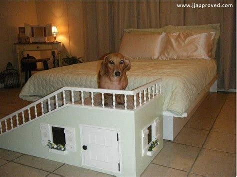 dog bed dresser with stairs best dog r ever pet stuff dog r dog