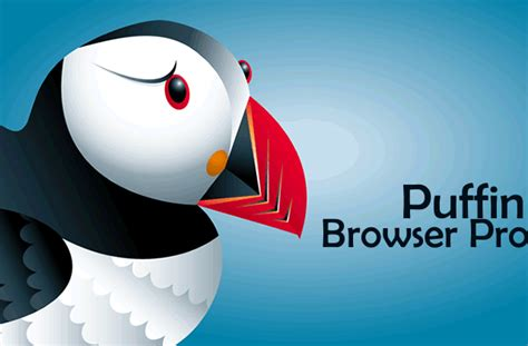 puffin browser pro apk worms 4 apk obb v1 0 419806