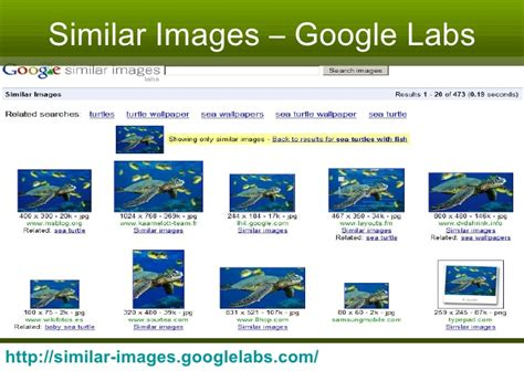 google images reference google reference update