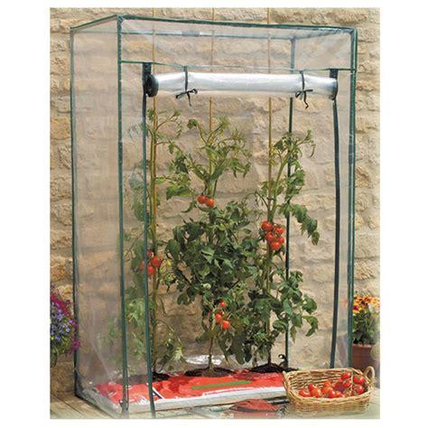 piante alte da vaso serra per orto pomodori con copertura in pvc arredo