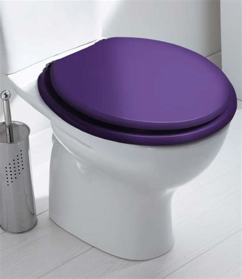 colored toilet seats coloured toilet seat adaptive help aids